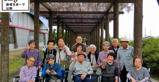 藤見学…赤坂スポーツ公園