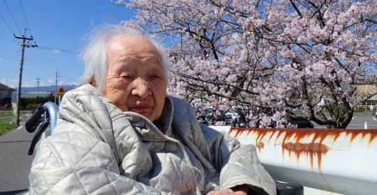 町内散歩♪…満開の桜を満喫しました🌸